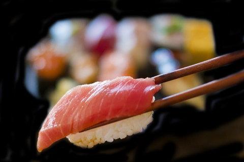 かっぱ寿司の食べホーにチャレンジ!