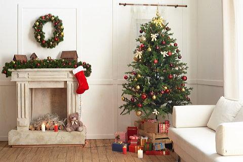 部屋の広さに合ったクリスマスツリーの大きさを模索中…。