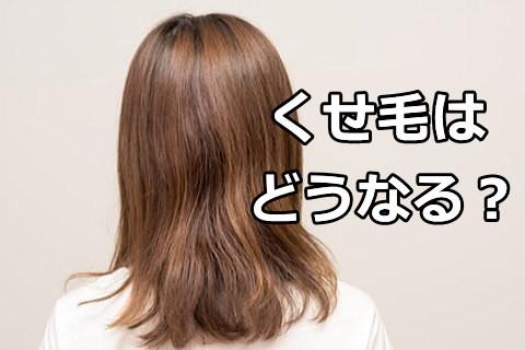 カミカ シャンプー 評判