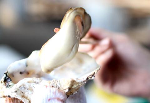 巨大な坂越牡蠣を満喫!