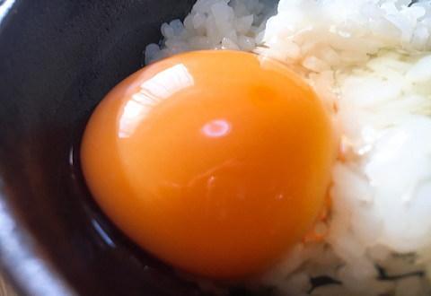 お取り寄せした新鮮卵はスーパーのものとは別物だった!