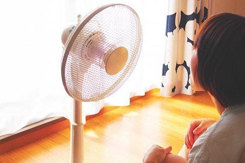 部屋が暑くて扇風機の前から離れられない・・・